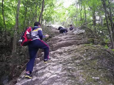 山登りに行きました。