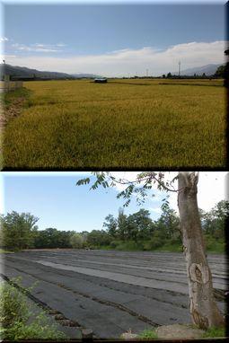 長野県まで
